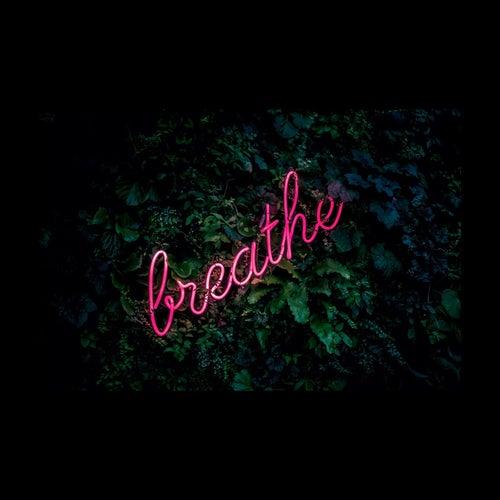 Breathe. de Audible Doctor
