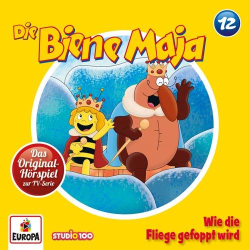 12/Wie die Fliege gefoppt wird von Die Biene Maja