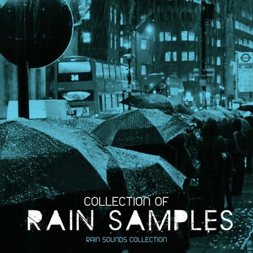 Collection of Rain Samples de Rain Sounds Collection