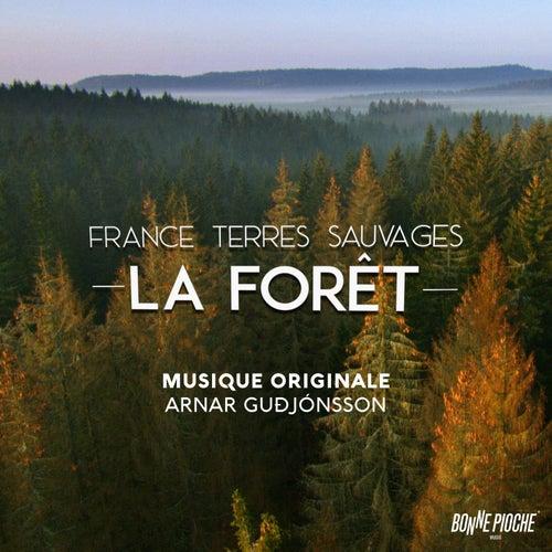 France terres sauvages: La forêt (Bande originale du film) by Arnar Guðjónsson