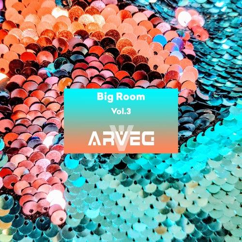 ARVEG Big Room, Vol.3 - EP by Various Artists