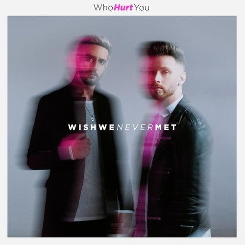 Wish We Never Met by WhoHurtYou