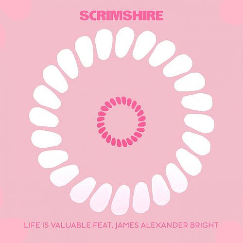 Life Is Valuable by Scrimshire