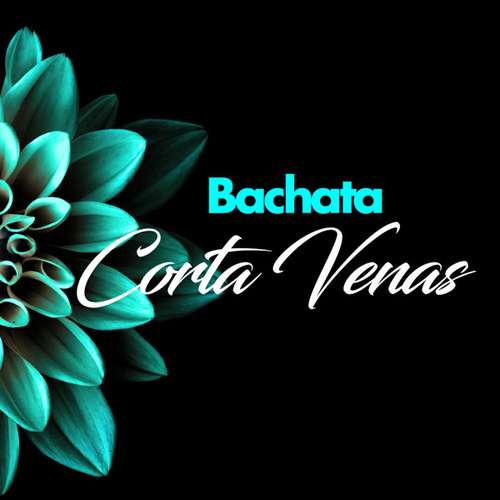 Bachata Corta Venas de Various Artists