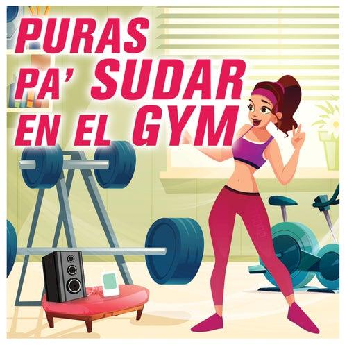 Puras Pa' Sudar En El GYM de Various Artists