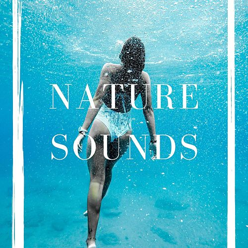 Nature Sounds: Rain, Rainforest and Jungle – Soothing Natural Sound Loopable von Various Artists