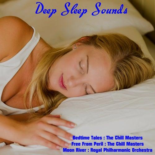 Deep Sleep Sounds de Various Artists
