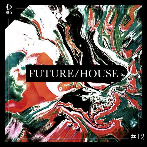 Future/House #12 de Various Artists