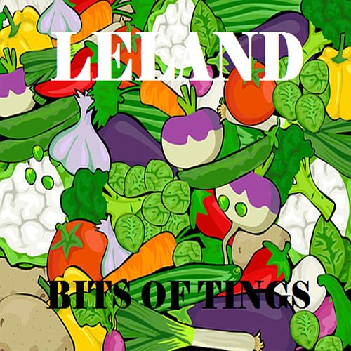 Bits of Tings by Leland