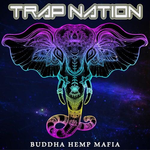 Money on My Mind von Trapnation