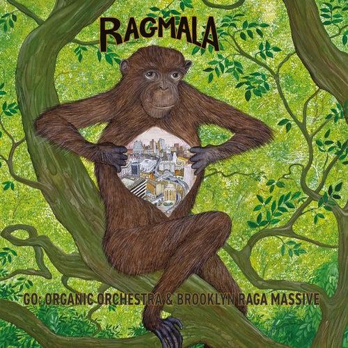 Ragmala de Go: Organic Orchestra