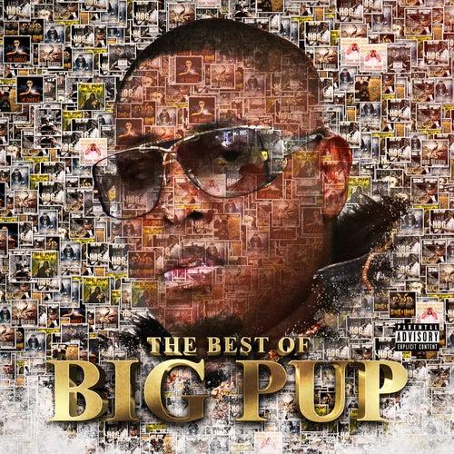 The Best of Big Pup de Big Pup
