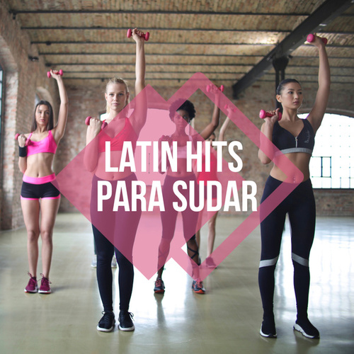 Latin Hits Para Sudar de Various Artists