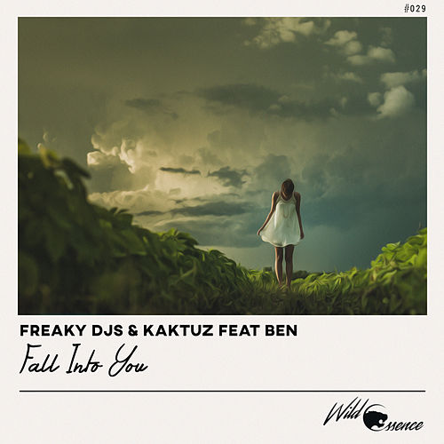 Fall Into You by Freaky DJ's