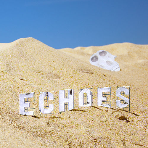 Echoes by Furious Monkey House