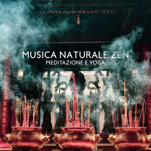 Musica naturale zen (Meditazione e yoga) de Meditazione zen musica