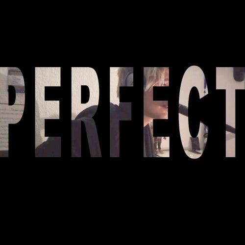 Perfect von Alan Otto