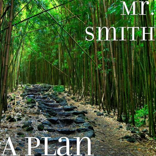 A Plan de Mr. Smith