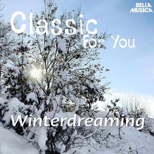 Classic for You: Winterdreaming by Various Artists