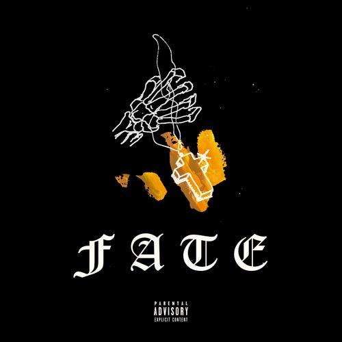 Fate by Josh Stone