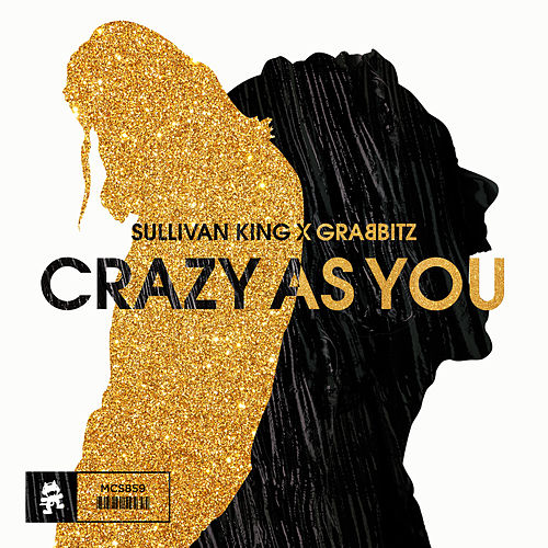 Crazy as You by Sullivan King