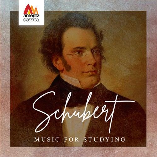 Schubert: Music for Studying de Various Artists