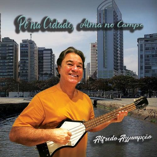 Pé na Cidade, Alma no Campo by Alfredo Assumpção