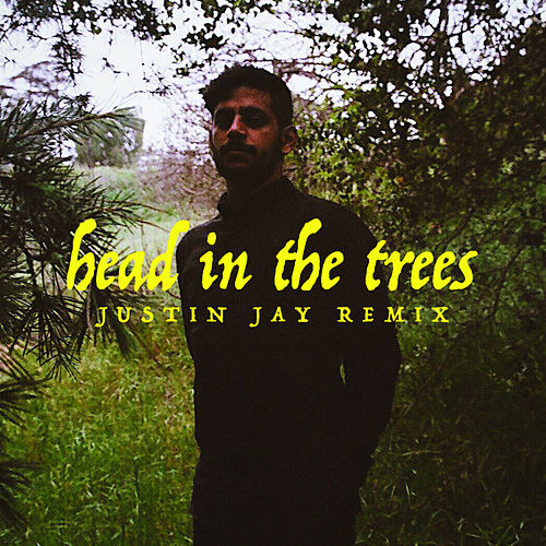 Head In The Trees (Justin Jay Remix) von Hotel Garuda