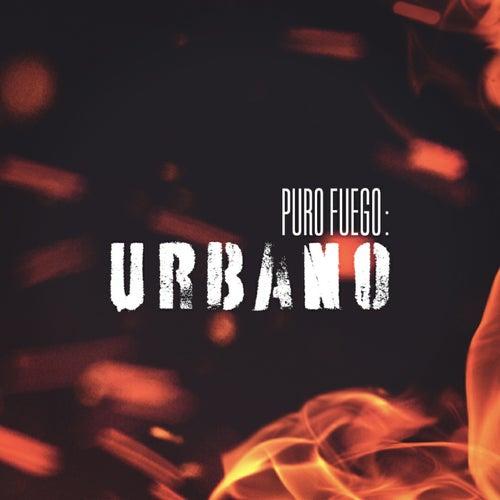 Puro Fuego: Urbano by Various Artists