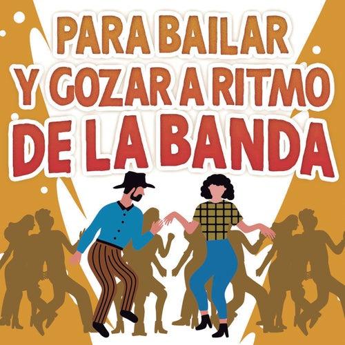 Para Bailar y Gozar A Ritmo De La Banda von Various Artists