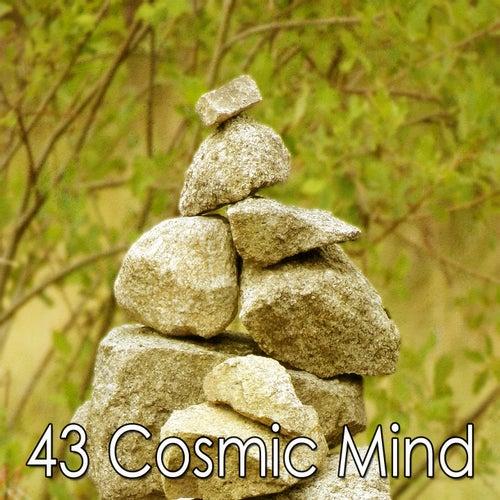 43 Cosmic Mind de Meditation Awareness