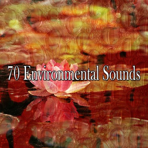 70 Environmental Sounds von Entspannungsmusik