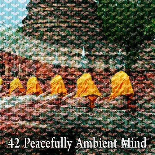 42 Peacefully Ambient Mind de White Noise Research (1)