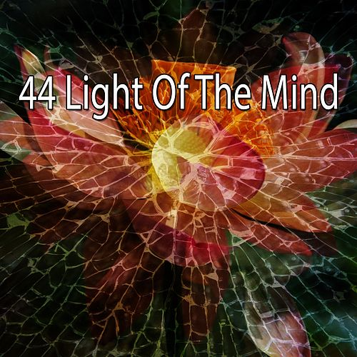 44 Light of the Mind de Zen Meditate
