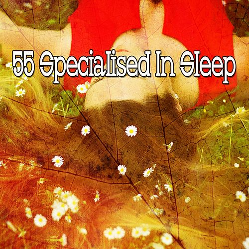 55 Specialised in Sleep de Smart Baby Lullaby