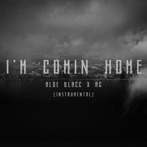 I'm Comin' Home (Instrumental) von Reuben And The Dark