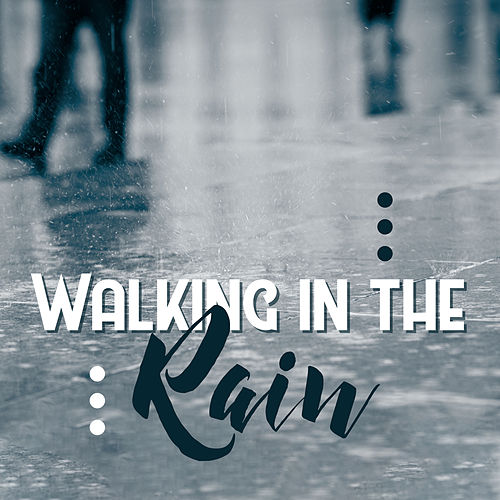 Walking in the Rain: Acoustic Covers, Music for Soul von Various Artists