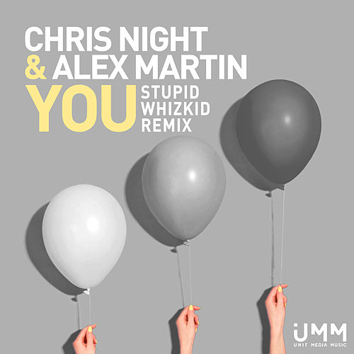 You (Stupid Whizkid Remix) by Chris Night