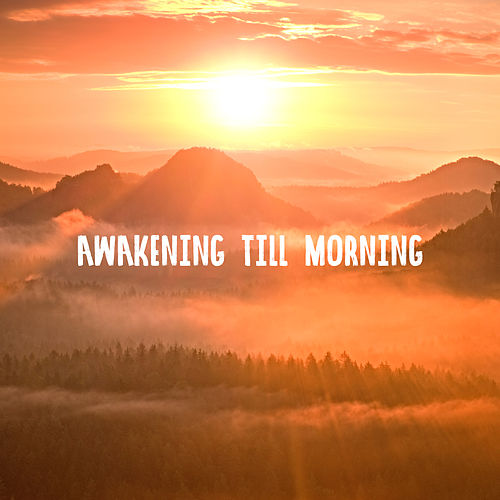 Awakening Till Morning: Making Love Music von Various Artists