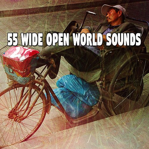 55 Wide Open World Sounds by Trouble Sleeping Music Universe