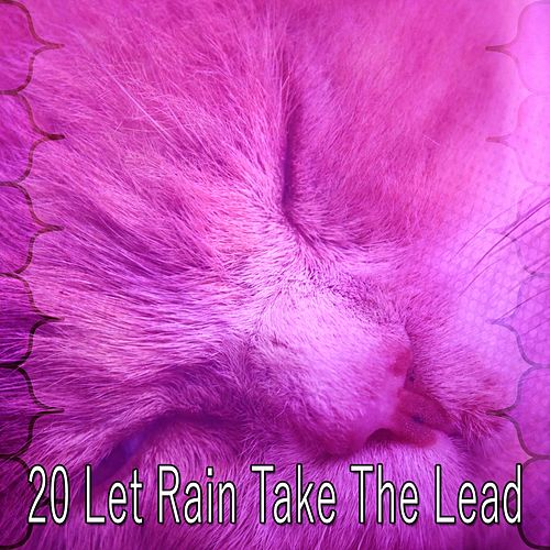 20 Let Rain Take the Lead by Rain Sounds and White Noise