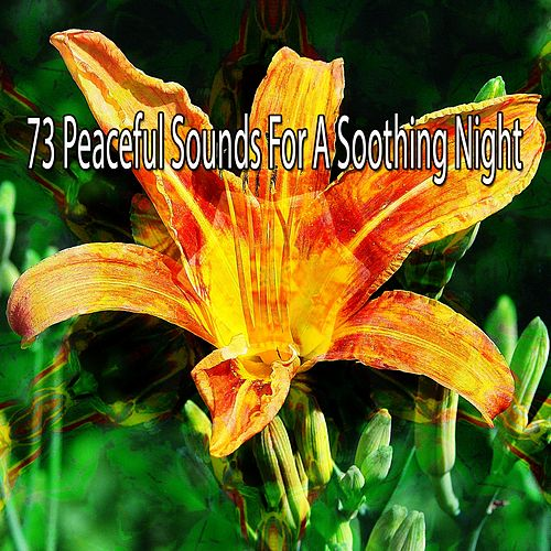 73 Peaceful Sounds for a Soothing Night de S.P.A