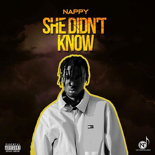 She Didn't Know by Nappy