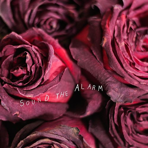 Sound the Alarm by Us