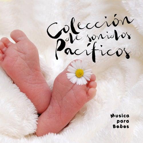 Colección de sonidos pacíficos de Musica para Bebes