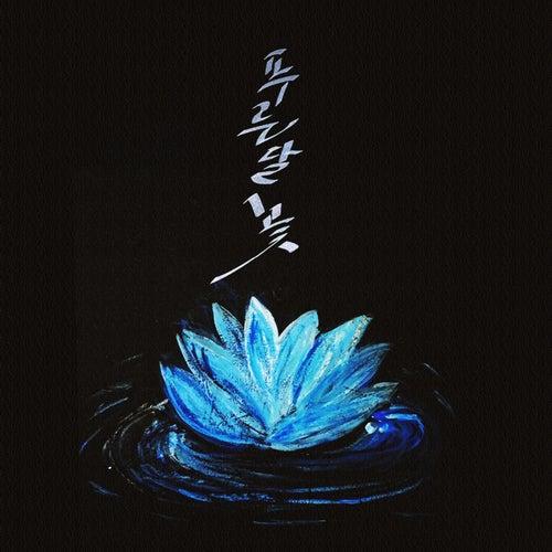 Blue Moon Flower by Blue Moon