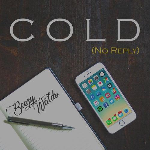 Cold (No Reply) de Beezy Waldo