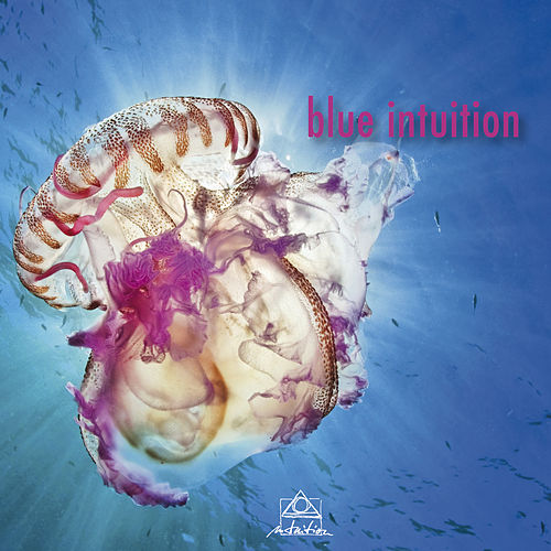 Blue Intuition by Various Artists
