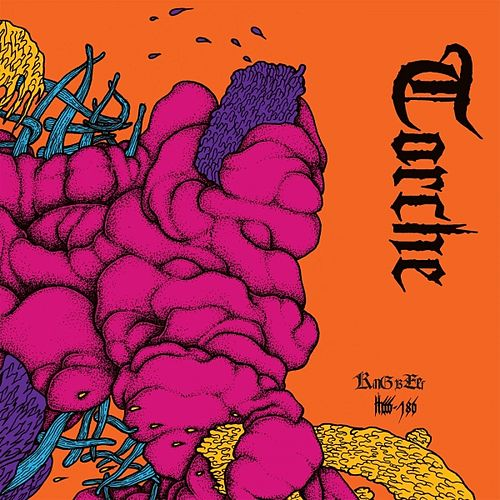 King Beef - Single by Torche