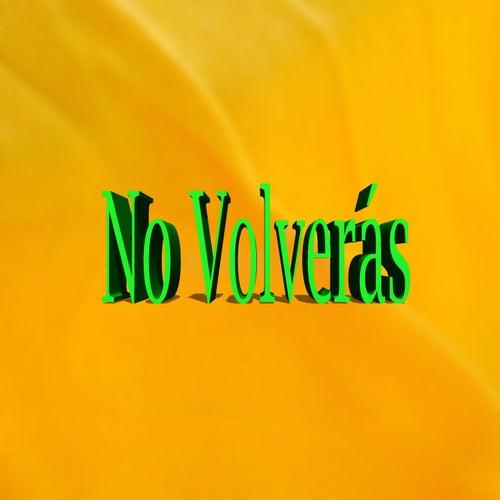No Volverás by Yolandita Monge